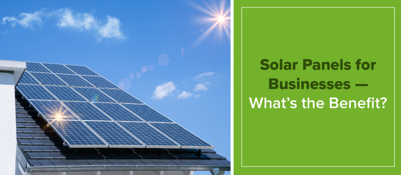 Solar Panel Benefits for Businesses